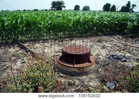 Manhole in a Cornfield