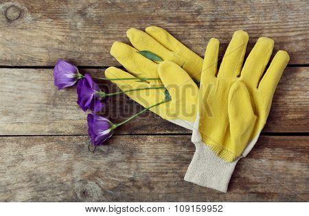 Yellow garden gloves and violet flower on wooden background