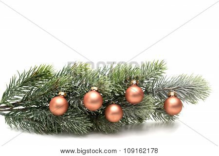 Fir Branch Decorated With Christmas Balls