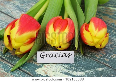Gracias (thank you in Spanish) with red and yellow tulips on rustic wood