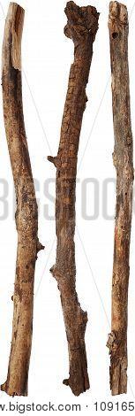 Tree sticks