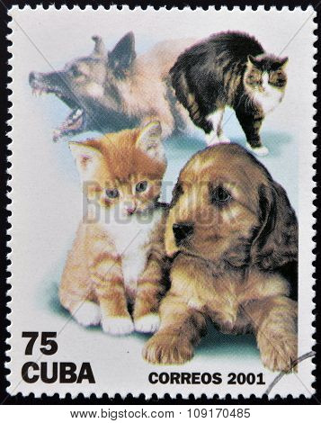 CUBA - CIRCA 2001: A stamp printed in the Cuba shows dogs and cats circa 2001