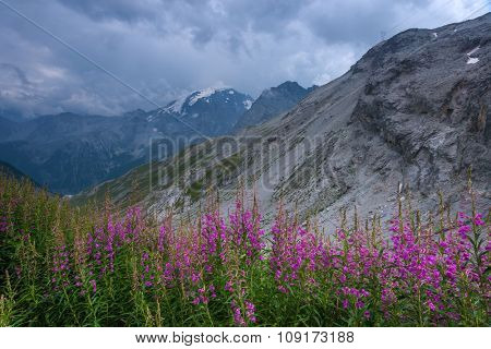 Beautiful view from top of mountain pass. Alps, Europe.