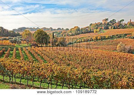 Countryside Of Emilia Romagna, Italy