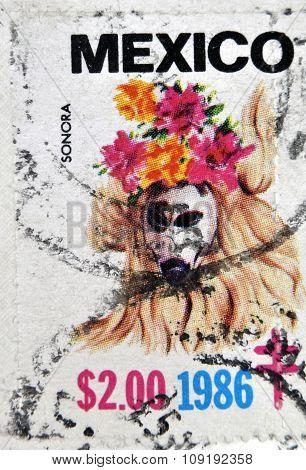 MEXICO - CIRCA 1986: A stamp printed in Mexico shows Mexican mask Sonora circa 1986