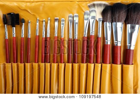 Makeup Brushes Set In Case, Close Up