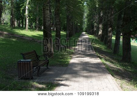 Bench On The Shaded Alley