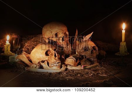 Still Life With Three Skulls, Dry Fruit And Hay