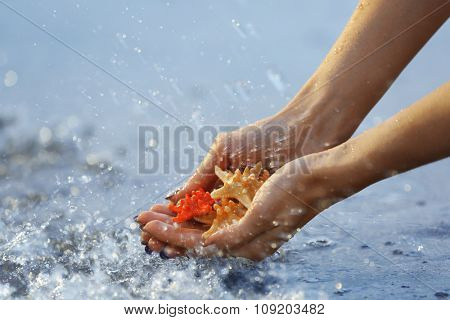 Female hands holding sea stars and touching water