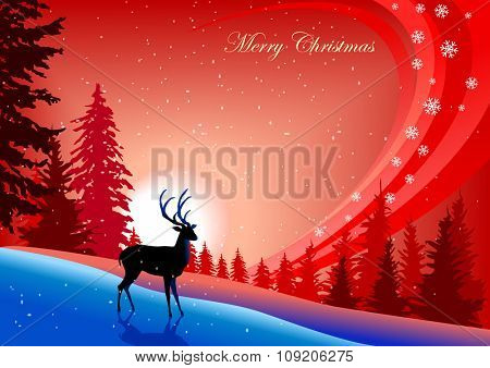 Reindeer : Decorative