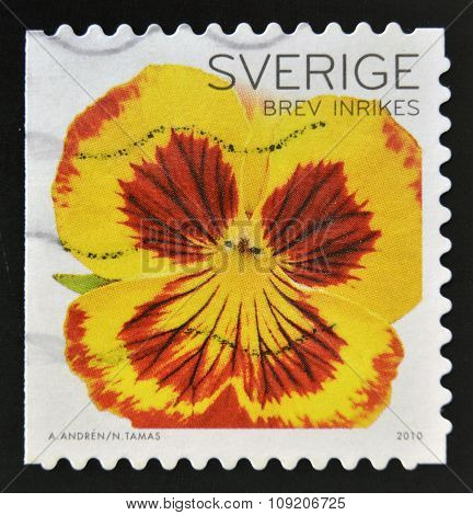 SWEDEN - CIRCA 2010: a stamp printed in Sweden shows close up view of beautiful pansy flower