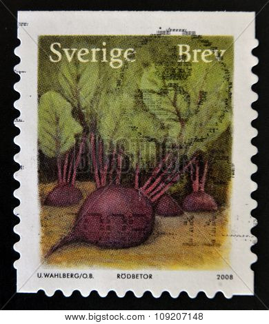 SWEDEN - CIRCA 2008: a stamp printed in Sweden shows image of beetroot circa 2008