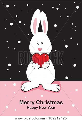 white rabbit with gift