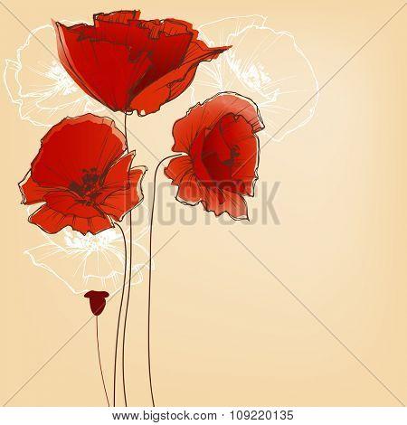 Flower background for greeting cards, poppy design