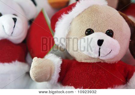 Santa Clause Bear puppies