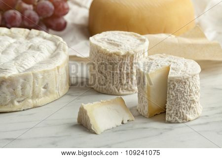 French cheese platter with camembert,goats cheese and grapes as dessert