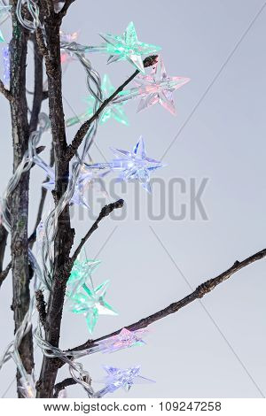 Star Shaped Christmas Lights On Bare Twigs