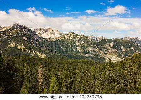 The Julian Alps In Slovenia, Near The Bohinj Lake