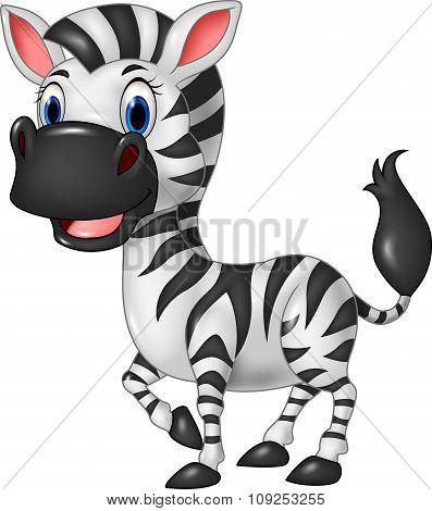 Cartoon funny zebra posing isolated on white background