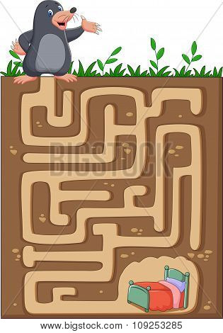 Help mole to find way home in an underground maze.