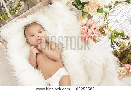 Adorable Baby Girl In Box With Fur Blanket And Flowers Around