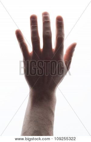 Mans hand showing five count on white
