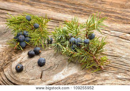 Juniper berries on wooden background