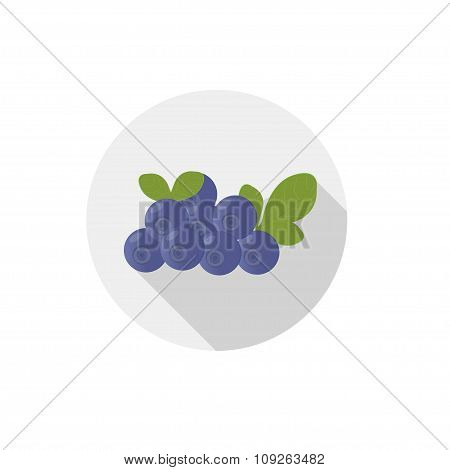 Isolated Flat Icon Of Vegetarian Eating Berries On A White Background. Ripe Wild Blueberries . Vecto