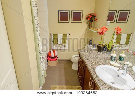 Fragment of a luxury bathroom.