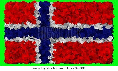 Flag of Norway, Norwegian made from leaves
