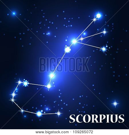 Symbol. Scorpius Zodiac Sign. Vector Illustration.