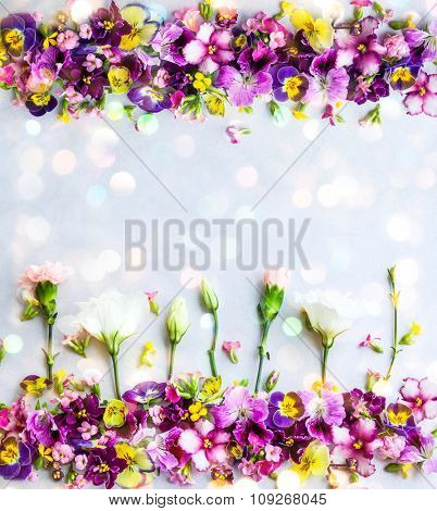 Background of fresh multicolored flowers