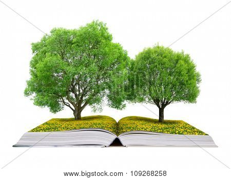 Book of nature with trees on meadow