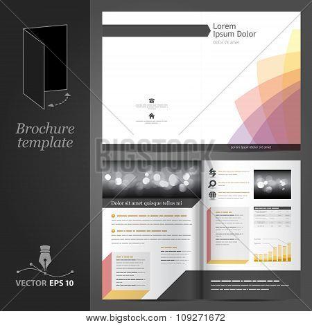 White brochure template design