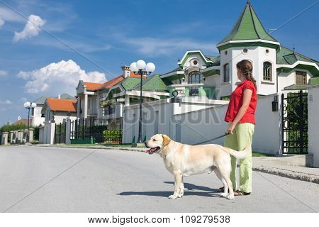 woman walking a dog on the street with nice houses in background. Real estate concept