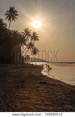 Dark Sunset Over Sea, Sandy Coastline, Palms.