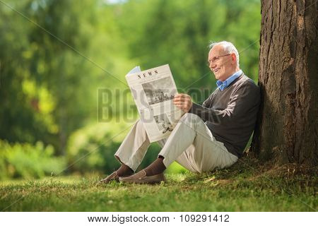 Relaxed senior gentleman sitting by a tree in a park and reading a newspaper on a beautiful sunny day