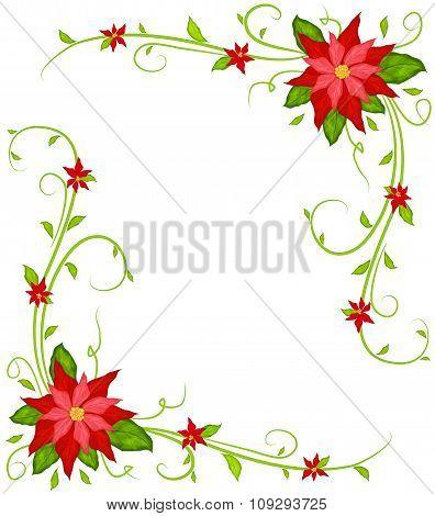 Poinsettia Background Vector