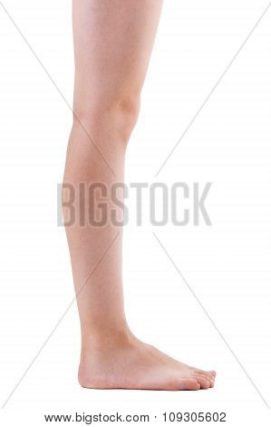 Girls Leg On A White Background
