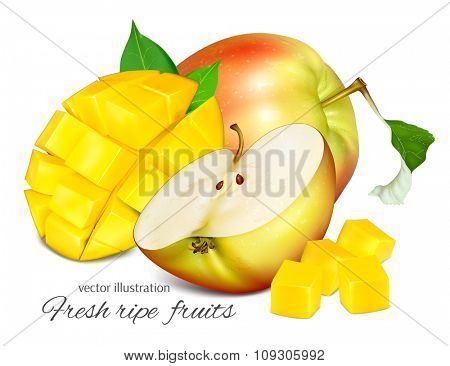 Ripe fresh fruits. Vector illustration