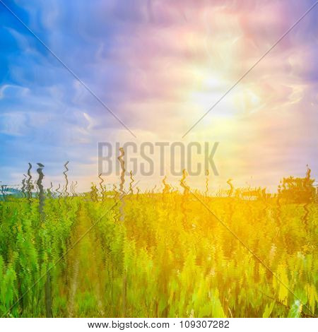 green natural landscape with sky reflected in water