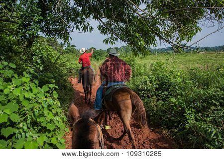 Vinales Valley, Cuba - September 24, 2015:  Local Cuban Coutryside Man Ride Horsback In Scenic Lands