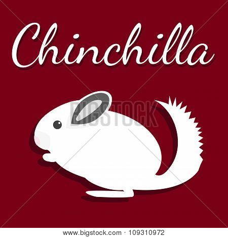 Chinchilla. Vector illustration. Pet icon in flat style design.