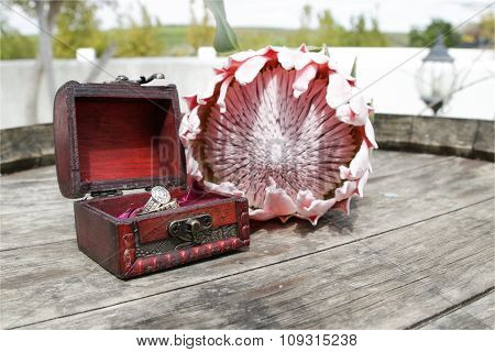 Rings in a box with Protea