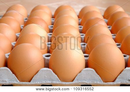 dozen brown eggs in a carton