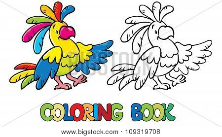 Funny parrot coloring book