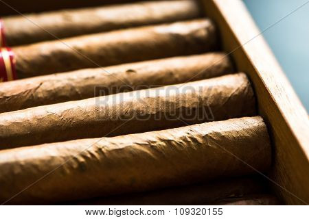 Cuban Cigars In Wooden Crafted Humidor