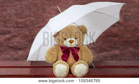 Teddy bear on the bench with an umbrella on autumn background