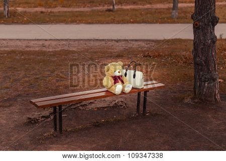 Teddy bear on the bench with a purse on autumn background