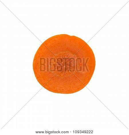 Fresh Carrot Slice